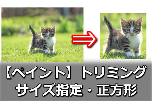 ペイントで画像をトリミング サイズ指定・正方形で切り取る方法