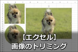 エクセルで画像をトリミングする方法【正方形・丸型・斜め】