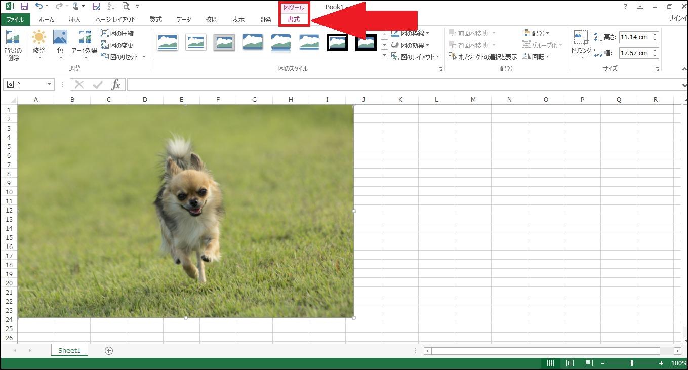 エクセルに画像を挿入3