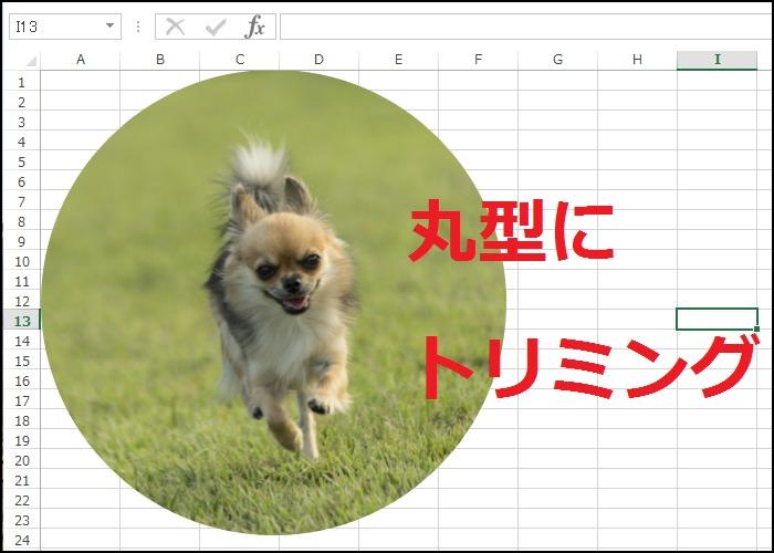 エクセルで画像を丸型にトリミングする方法